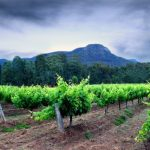 The ultimate guide to a romantic getaway in NSW