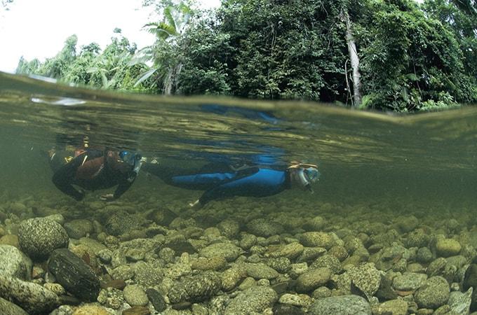 Mossman River - Queensland