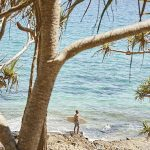 48 hours in QLD's beach-chic Noosa