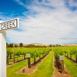 Australia's Top Wine Regions of 2016 Revealed