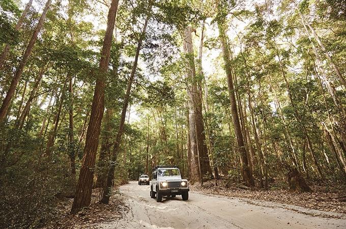 4WD adventure, Fraser Island