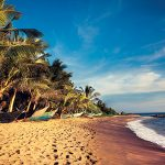 How to Spend 10 Days in Sri Lanka