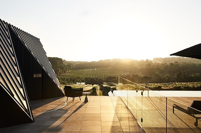 Jackalope- Australia