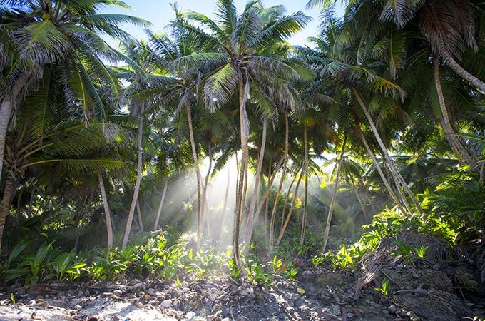 Christmas Island, dreamy destinations