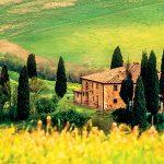 Gourmet Italy with Chef Stefano De Pieri