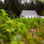 Happy Valley: NSW Hunter Valley Accommodation to suit every mood