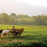 On-Trend Travel: Magical Myanmar