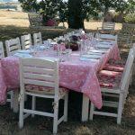 Picnics in Provence