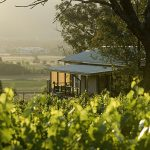 Discover What Makes Mudgee So Special