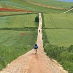 Our Camino: An 800 Kilometre Trek From France to Spain