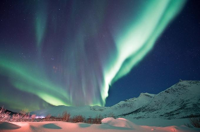 arctic escape