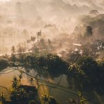 7 reasons you'll love a honeymoon in Ubud, Bali