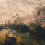 7 reasons you'll love a honeymoon in Ubud, Bali