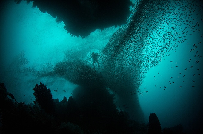 dive destinations in Asia