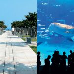 Top 5 Things to do in Okinawa, Japan