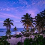 Great Valentine's Packages for the Pacific Islands and New Zealand