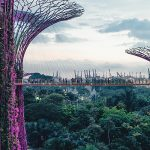 Six reasons to visit Singapore in 2018