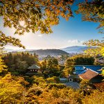 Blossoming Romance: Why Kyoto is a Lover's Paradise