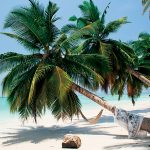 Asian Islands For Two – Havelock Island, India