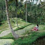 The Couple's Guide to Bali's Most Romantic Regions