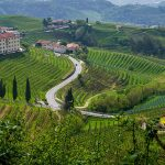 Cycle through Italy's Prosecco Hills on this new tour