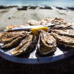 Oyster-lovers, head to NSW's Narooma this May