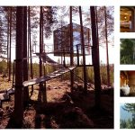 Top 5 Coolest Treehouse Hotels