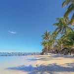 Discover the Best of the Bush and Beach in Mauritius