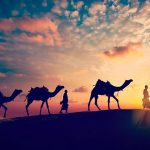 Sunset adventure in the Rajasthan desert