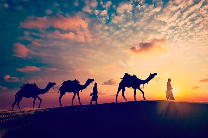 Be enchanted by the sheer beauty of Rajasthan's desert at sunset