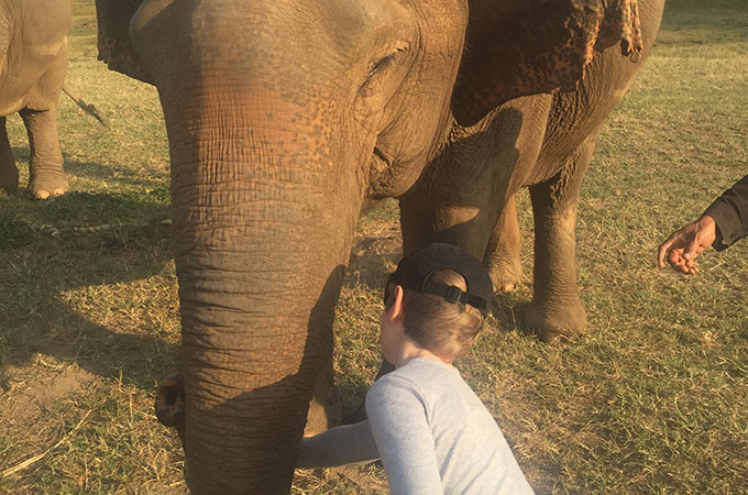 Get up close and personal with the residents at Chiang Mai's Elephant Nature Park in Chiang Mai