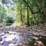 Port Douglas: Where rainforest meets reef