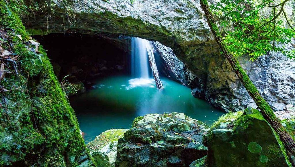 Springbrook National Park - ultimate australian honeymoon
